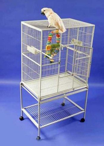 Budgie Flight Cage